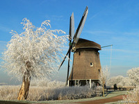 Molen / Windmill - Rustenburg, The Netherlands